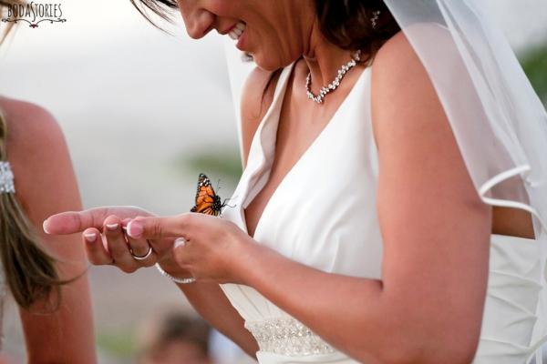 V&M, suelta de mariposas, d-bodas.com weddiing planners