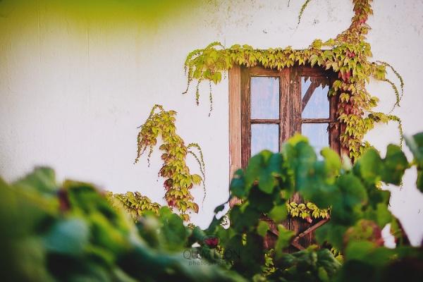 Laura+dani-preboda-006, d-bodas.com