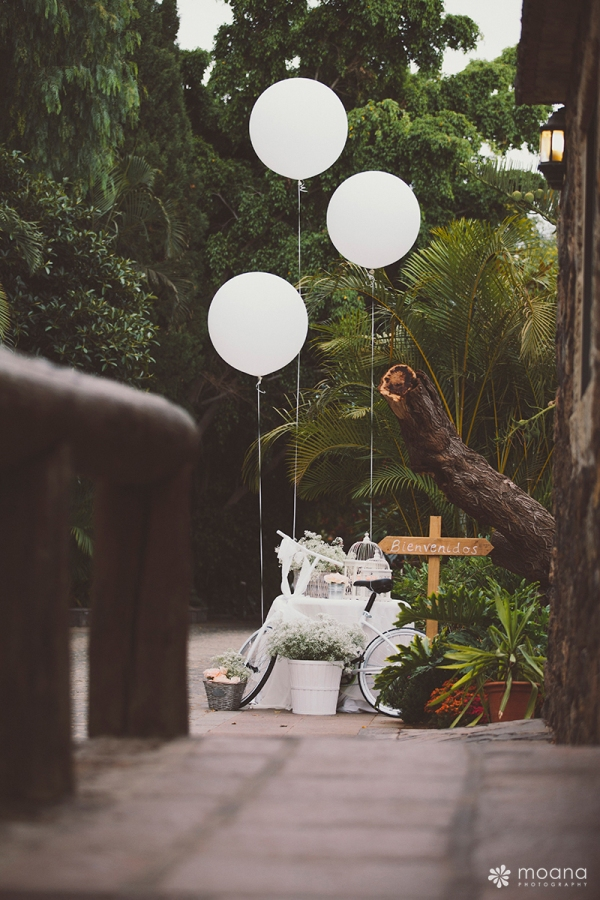 Wedding Planner Tenerife_15