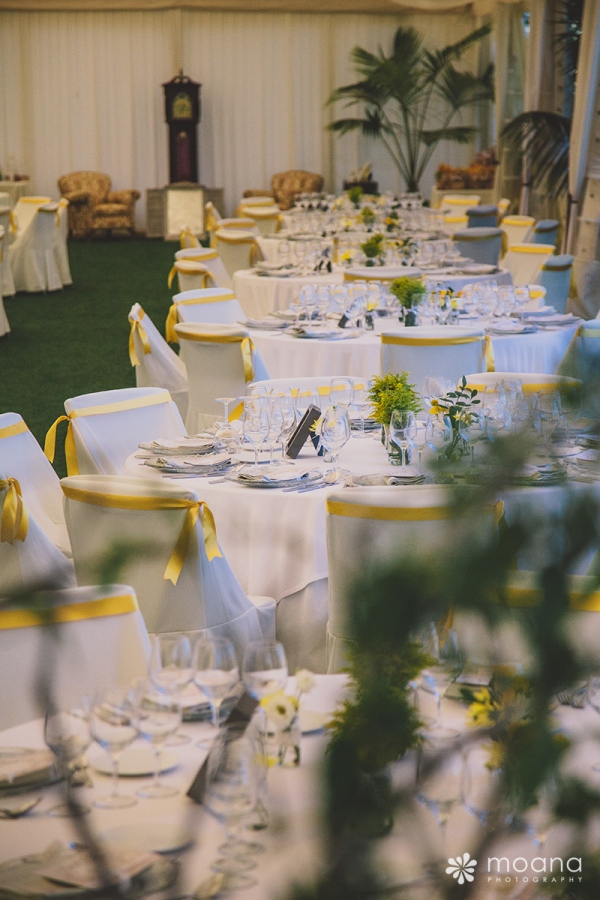 bodas tenerife d-bodas.com